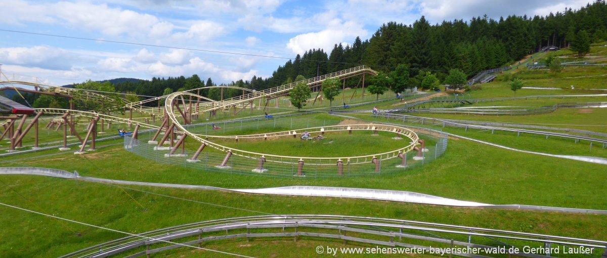 sankt-englmar-ausflug-freizeit-niederbayern-eventlocation-sommerrodelbahn