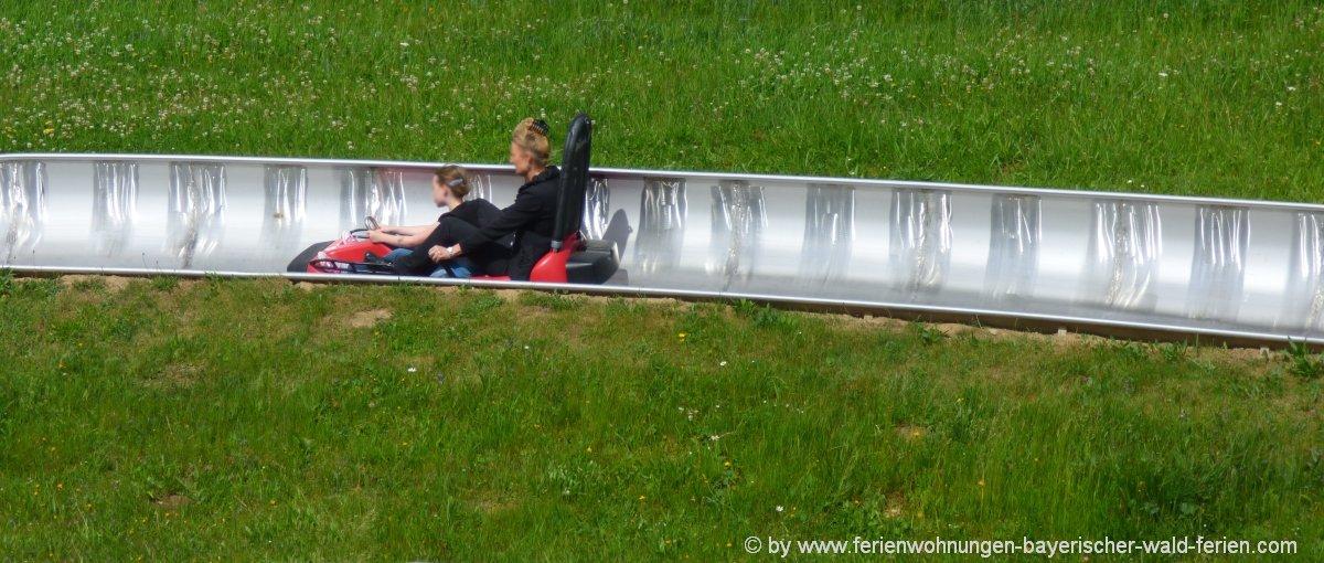 Vorschlag für Betriebsausflug: Firmenausflug zur Sommerrodelbahn