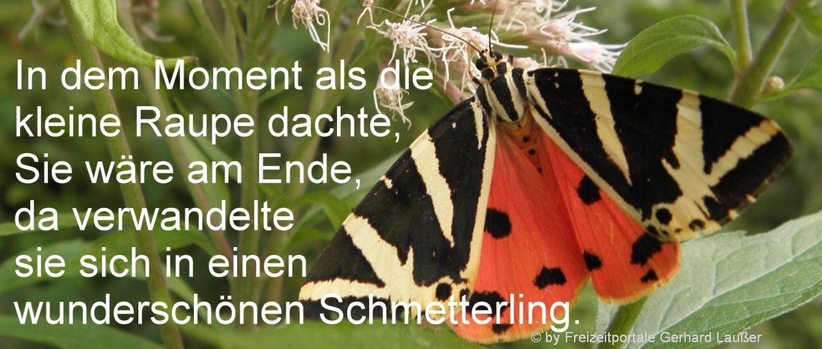 sprüchebilder-motivationsspruch-ende-neubeginn-originelle-verse